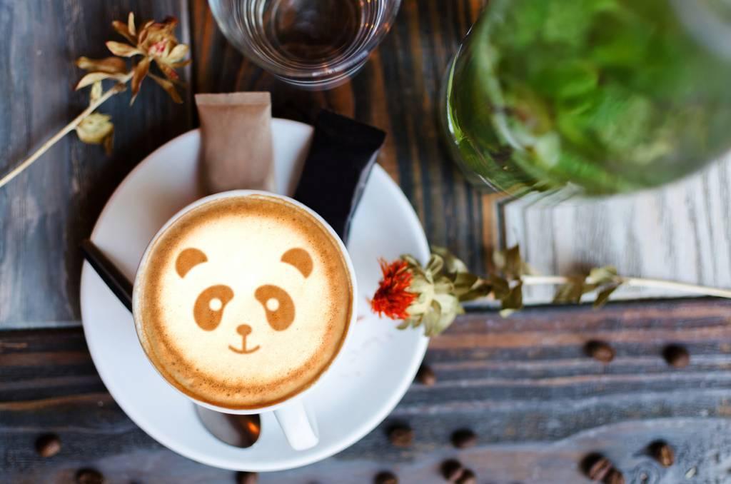 accessoires panda