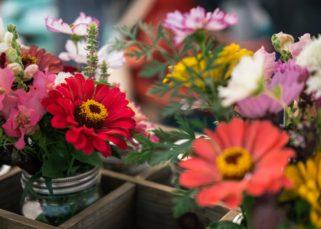 Inspirations DIY fleurs séchées